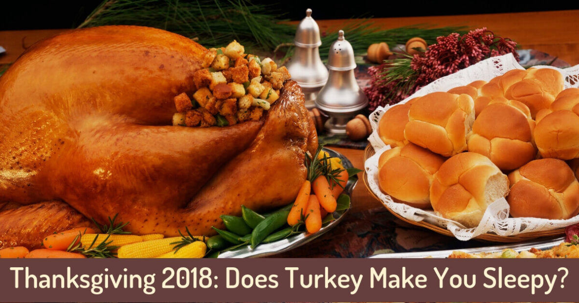 Thanksgiving 2018: Does Turkey Make You Sleepy?