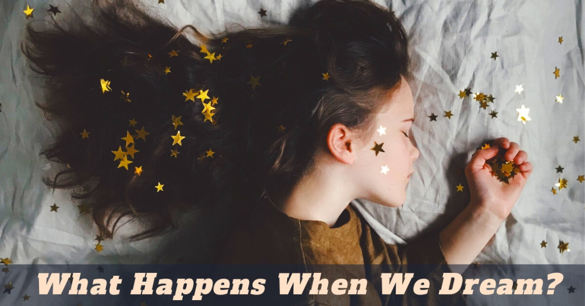 What Happens When We Dream?